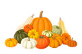 Pumpkins. Royalty Free Stock Photo