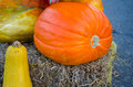 Pumpkins, Halloween, autumn harvest days Royalty Free Stock Photo