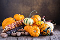 Pumpkins, indian corn and variety of squash Royalty Free Stock Photo