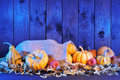 Pumpkins jute bag thanksgiving different in on straw with copyspace in blue sunset light Royalty Free Stock Photos