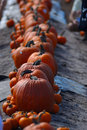 Pumpkins line Royalty Free Stock Photo