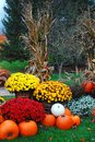 Autumn floral and pumpkin display Royalty Free Stock Photo
