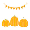 Pumpkins patch vector illustration perfect background with hand drawn Stock Photography