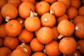 Pumpkins ripe pumkins lying on the stand for sale Royalty Free Stock Photos