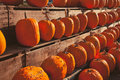Pumpkins for sale at country store numerous lined up a rural Stock Photo