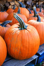 Pumpkins for sale at a local farm Stock Images
