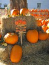 Pumpkins for sale during a sunny bright day Royalty Free Stock Images