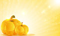 Pumpkins and shine two on a shining background abstract halloween background Royalty Free Stock Image