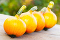 Pumpkins in single file on wood Stock Images