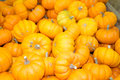 Pumpkins small harvest on farm Stock Photography