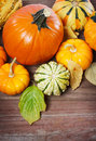 Pumpkins and squashes and autumn leaves assorted on rustic wooden boards Royalty Free Stock Image