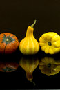 Pumpkins and squashes on black background Royalty Free Stock Photo