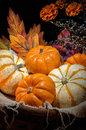 Pumpkins still life happy halloween basket Royalty Free Stock Photo