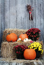 Pumpkins on Straw Bales Royalty Free Stock Photo