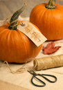 Pumpkins for thanksgiving tied with rustic label table setting Royalty Free Stock Photography