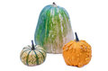 Pumpkins three different types of isolated on a white background Stock Image