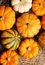 Pumpkins top view of on straw Royalty Free Stock Photo