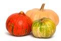 Pumpkins. varicolored. Royalty Free Stock Photo