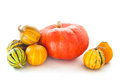 Pumpkins on the white background Stock Photography