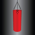 Punching bag large red for training vector illustration Stock Image