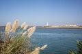 Punta de moral andalucia spain looking towards isla cristina Stock Photos