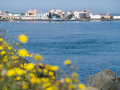 Punta de moral isla canela andalucia spain yellow defocused dandelions in front of the sea looking across at andalusia Stock Photography