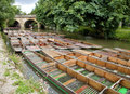 Punting in Oxford, England Royalty Free Stock Photo