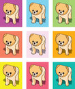 Puppy cards or vectors Royalty Free Stock Photos