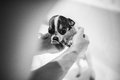 Puppy chihuahua take a bath with soap blackandwhite Stock Photography