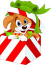 Puppy in a Christmas  gift box Royalty Free Stock Photo