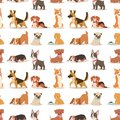 Puppy cute playing dogs characters funny purebred comic happy mammal doggy breed seamless pattern background vector