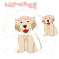 Puppy Golden Retriever Bride W...