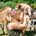 Puppy Love on a Canadian Farm Royalty Free Stock Photo