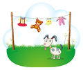 A puppy near the hanging baby clothes illustration of on white background Stock Photo