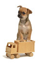 Puppy with wooden truck Stock Images