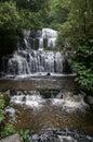 Purakaunui Falls Royalty Free Stock Photo
