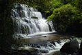 Purakaunui falls, Catlins, New Zealand Royalty Free Stock Photo