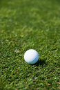 Pure golf white ball against the green grass Royalty Free Stock Photo