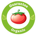 A pure organic label with a red tomato illustration of on white background Stock Images