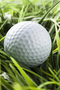Pure white golfball on bright green grass Royalty Free Stock Photography