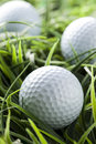 Pure white golfball on bright green grass Stock Photography