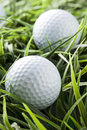 Pure white golfball on bright green grass Stock Photo