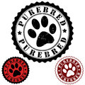 Purebred stamp grunge rubber with word and animal footprint inside vector illustration Stock Photography