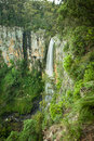 Purlingbrook Falls in Springbrook National Park, Gold Coast, Australia Royalty Free Stock Photo