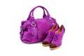 Purper wijfje bag&shoes-1 Royalty-vrije Stock Foto's