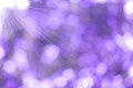 Purple background Abstract nature Royalty Free Stock Photo