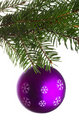 Purple ball on fir tree branch Stock Photo