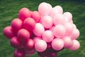 Purple balloons on green Royalty Free Stock Image