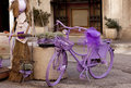 Purple bike Stock Image