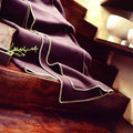 Purple blanket on stairway Royalty Free Stock Photo